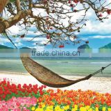 nature Beautiful Sea and coco scenery wallpaper design with hammock