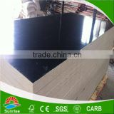Hot sales best price outdoor use film faced plywood sheets