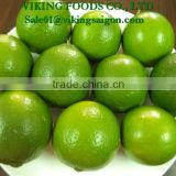 2016 _ FRESH SEEDLESS LIME _ FROM VIETNAM