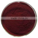 HOT Grape seed extract