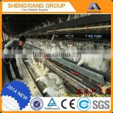 TUV Rheinland chicken poultry cage chicken brooder wire mesh cage automatic broiler chicken cages