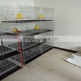 design layer chicken cages/chicken layer cage/ chicken cage for poultry farm for nigeria