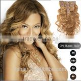 6# Chestnut Brown Body Wave Brazilian Remy Hair Extension, Product 7a Human Clip in Hair Extensions Weaves