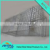 Factory Produce Eco-friendly metal automatic mouse or rat trap wire cage