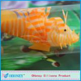 2014 Hot sales ornamental fish for fish tank/fish bowl/fish jar