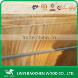 beech wood veneer/beech veneer for plywood furniture