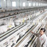 complete controlled poultry shed farm machinery for chicken house