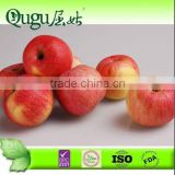 Red Huaniu Apple from China