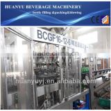 Glass Bottle Beer Production Machine/Line