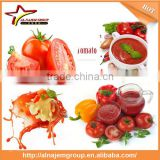 Best price tomato sauce making machine tomato sauce filling machine tomato paste sachet packing machine
