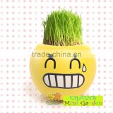 Mini Garden growing grass hair toy growing grass head toys 002-2(ceramic colour glaze)