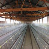 poultry breeding quail chicken broiler layer duck rearing equipment A or H type cage feeding equipment