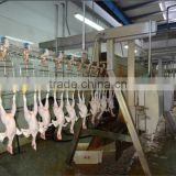Poultry Slaughter Processing Line/chicken Slaughterhouse Equipment/Poultry Processing Line