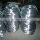 BWG12 electro galvanized wire Promotion now