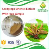 Manufacturer supply 100% Natural Cordyceps Sinensis Extract 30% polysaccharide 10% protein with high quality