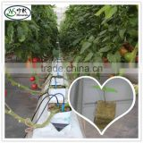 Hydroponic Rock wool grow cubes/ rockwool cube