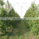 Plants Protection Anti Hail Net/Greenhouse Insect Proof Mesh/Agricultural Plastic Products Anti-Bee Netting Price