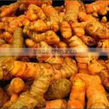Vietnam fresh Turmeric/Dried Turmeric powder/Dried whole Turmeric