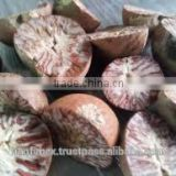 Vietnam BETEL NUTS good price