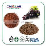 2015 Hot Sale Bulk Grape Seed Extract Podwer/Oil/Capsule/Tablet for Sale