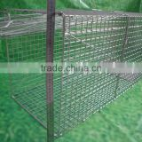 Collapsible Live Animal Cage Trap For Foxes dogs ,Possums,Dingoes,Ducks,Feral Cats