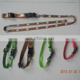 dog leashes & dog collars