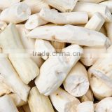Best Prices Fresh Cassava Root Planter for export