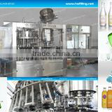 Automatic Glass Bottle Water Filling and Sealing Machine