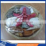 natural crafts seashell Basket Packs with starfish 4.5""
