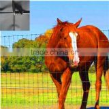 cattle filed fence/sheep wire mesh fence ,used livestock panels, Horse Fence, forest lap fence panel ,feedlot panel ,farm fence