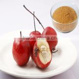 Standard Extract Brown Yellow Powder Hawthorn Berry Seed Extract with Flavones 2%