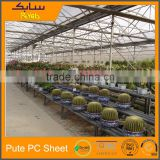 China Manufacturer polycarbonate sheet multi-span greenhouses for agriculture uv coating polycarbonate sheet greenhouse