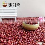 azuki bean small red bean 2016 crop high quality hot sale
