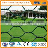 Hexagonal wire mesh (Factory Directly )