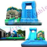 giant inflatable pool slide for adult,big inflatable toys WS012