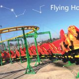 Roller coaster, amusement park rides flying horse