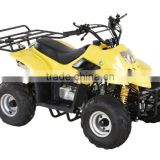 110cc kids mini quad bike(LD-ATV311)