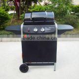 CSA & CE Approved Indoor & Outdoor 2 Burner Gas Barbecue Grill                                                                         Quality Choice