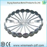 FACTORY PRICE black steel nail