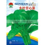 High Quality Chinese Hybrid Pakchoi Seeds Water Spinach seeds For Growing-Big Leaf Water Spinach