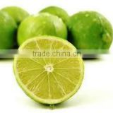 Lime Oil manufacturer.