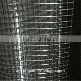 Cheap Welded wire mesh used in building, food, agriculture, welded wire netting (I - 041)