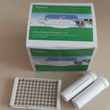 milk antibiotics test 4 in 1 milk test kit  Beta Lactam ,Tetracycline,Streptomycin,Chloramphenicol dairy testing