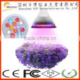 LED 9Red + 3Blue 3 Bands Hydroponic Plant 12W PAR38 E27 LED Grow Light 30, 60, 90 Beam Angel
