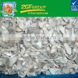 Chinese Grade A IQF Frozen Baby Oyster Mushroom