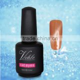 2015 Newest Nail Polish Manufacturer Custom Bottle Cat Eye Colour Gel Nail Polish