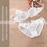 Most popular lace anti-bacterial cotton quick dry beautiful bra set
