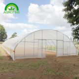 2019 low cost single tunnel plastic film greenhouse with  hydroponic  system for vegetables