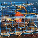plastic coated crab trap