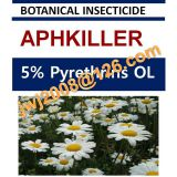 5% Pyrethrins OL, botanical insecticide, natural